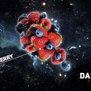 Dark Side Wildberry 30 гр Core