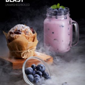 Dark Side Blueberry Blast 100 гр Core