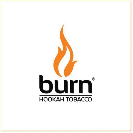 Burn Berry Mix 100 гр