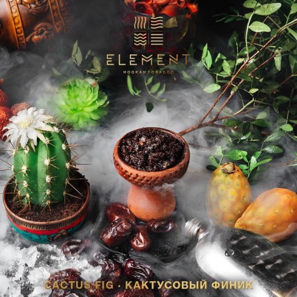 Element Cactus Fig Вода 40 гр