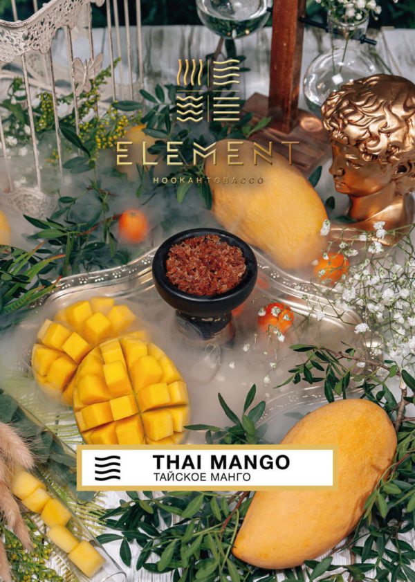 Element Thai Mango Воздух 40 гр