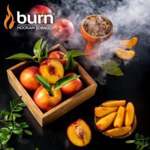 Burn Nectarine 100 гр