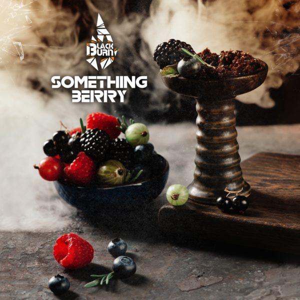 Black Burn Something Berry 200 гр