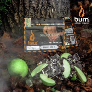 Burn Famous Apple 200 гр