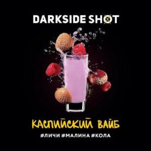 Dark Side Shot Каспийской Вайб 120 гр