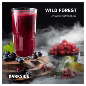 Dark Side Wild Forest 100 гр Core